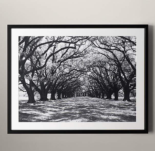 Philip Gendreau: Oak Alley Plantation