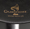 iPhone® Gramophone