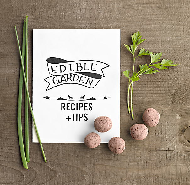 Edible Garden Kit