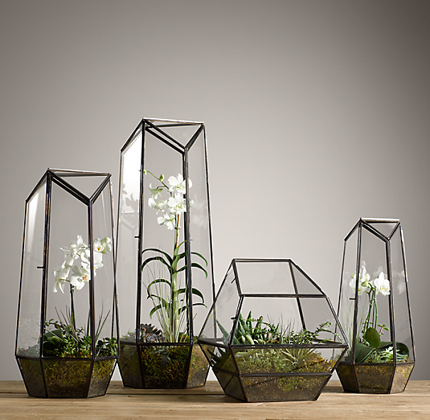 Faceted Glass Terrarium