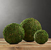 Preserved Moss Spheres (Set of 3)