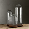 1920s French Glass Cloches