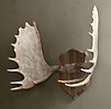Moose Antlers in Cast Resin