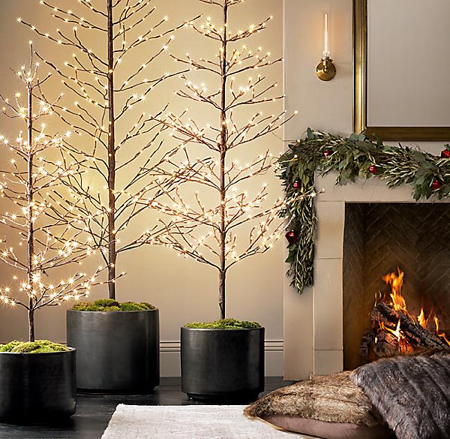 Starlit Tree Collection