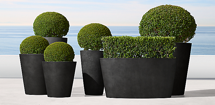 Planter Collections | RH on black planters, green planters, extra large planters, custom planters, mini planters,