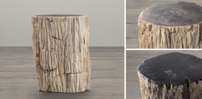 Petrified Wood Stump Collection & Petrified Wood Stump Collection | RH islam-shia.org