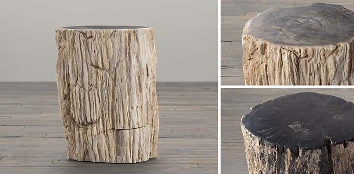 Strange Petrified Wood Stump Collection Rh Camellatalisay Diy Chair Ideas Camellatalisaycom