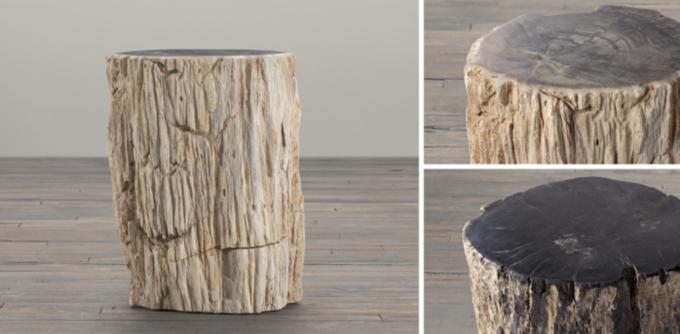 Petrified Wood Stump Collection & Petrified Wood Stump Collection   RH islam-shia.org