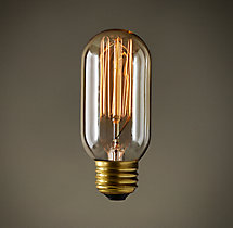 "T14 4¼"" Tube Squirrel-Cage Clear Filament Incandescent Bulb"