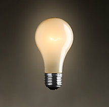 A19 Frost Filament Incandescent Bulb (Set of 2)