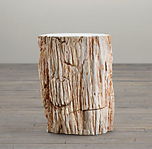 Petrified Wood Stump Mixed Side Table