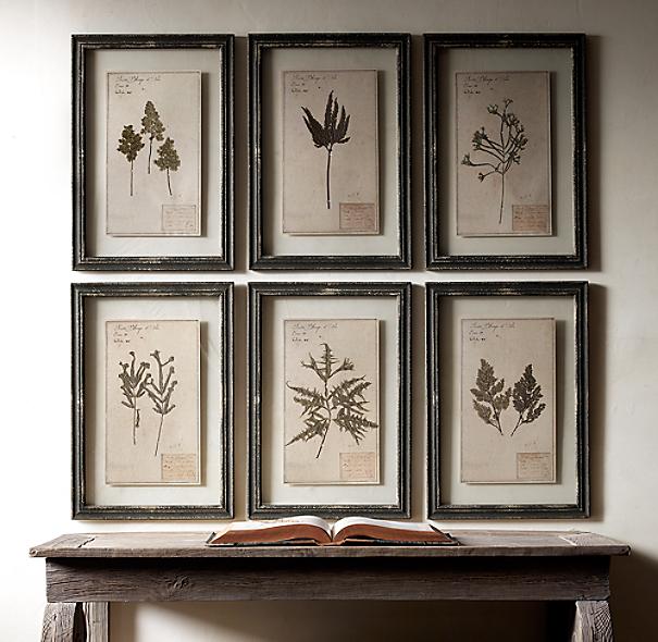 Black Flower 21st Century Op Art Set: 19th C. Framed Herbariums Black (Set Of 6