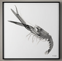 Nick Veasey X-ray Photography: Langostino