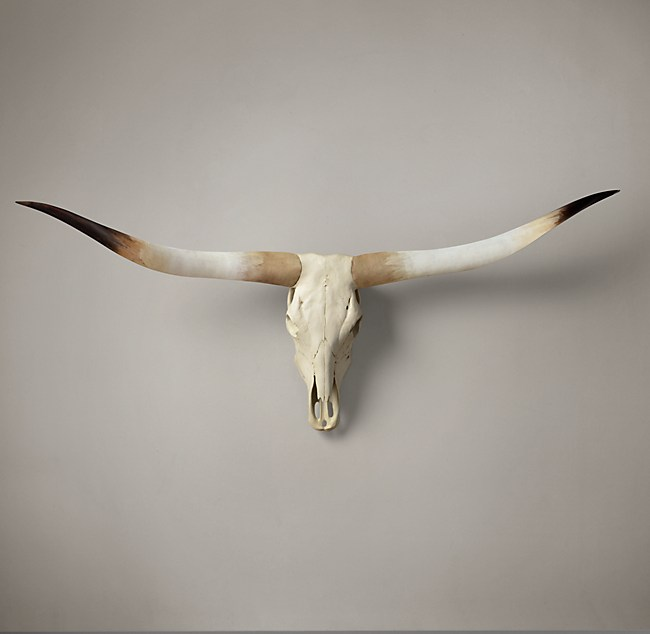 Texas Longhorn Steer Skull Natural
