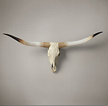 Texas Longhorn Steer Skull - Natural