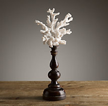 Branch Coral on Pedestal
