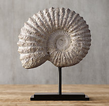 Cast Ammonite Fossil - Small