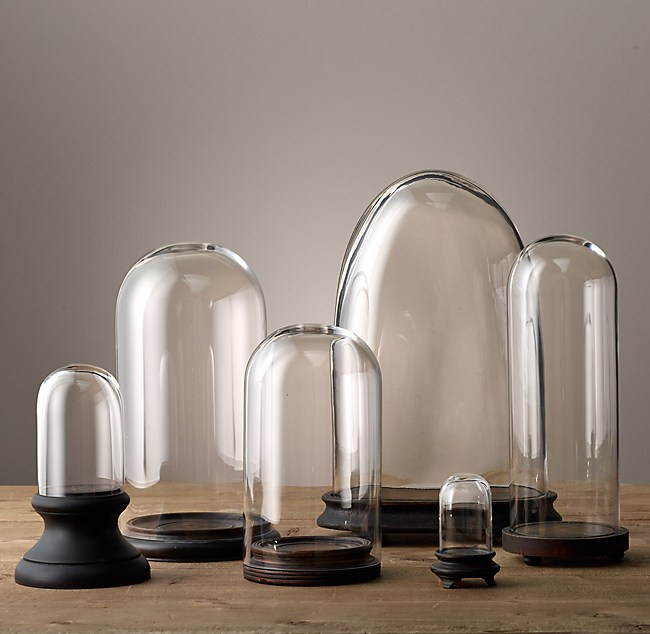 Petite Glass Cloche Collection