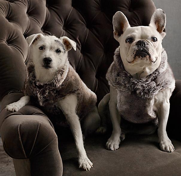 Luxe Faux Fur Pet Vest