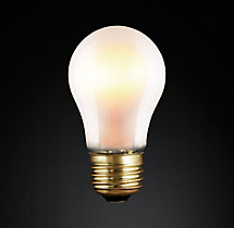A15 Incandescent Edison 40W Bulb Frost (Set of 2)