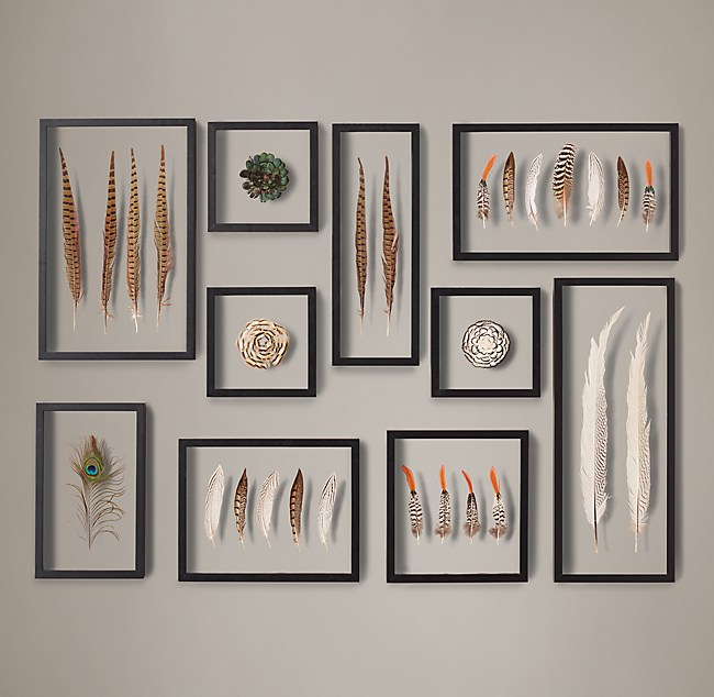 c360ec32f7ebc Framed Feather Collection