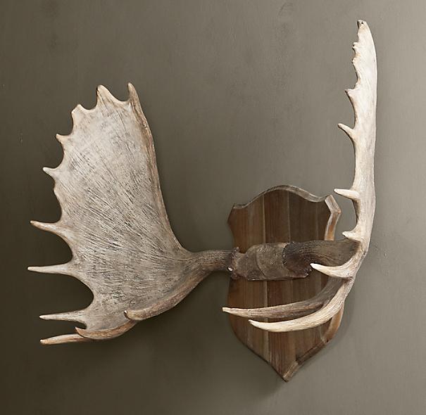 Moose Antlers In Cast Resin